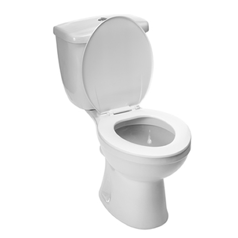 how to fix a clogged toilet with poop
